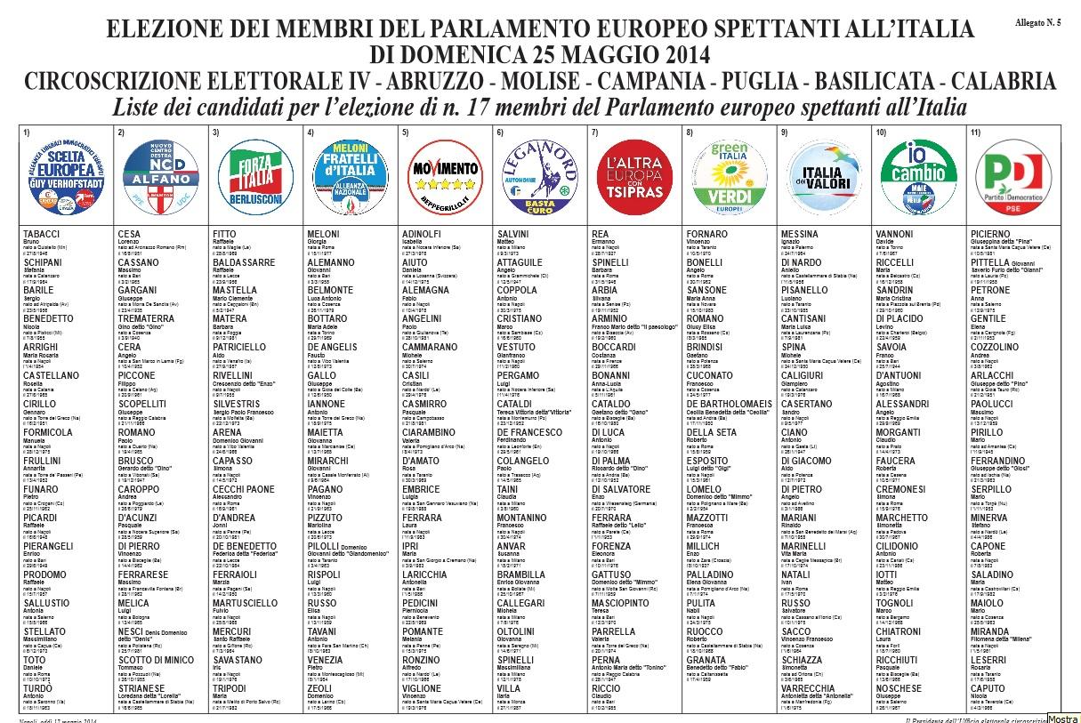 Oggi si vota per il rinnovo del parlamento europeo for Diretta parlamento oggi