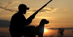 cane-cacciatore.jpg