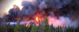 Incendi-russia.jpg
