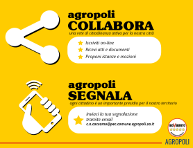 COLLABORA_M5S.png