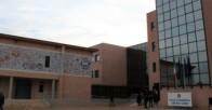 liceo_gatto