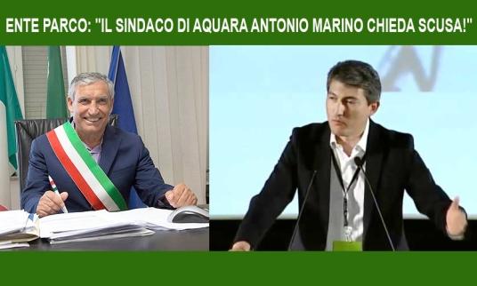 MARINO PELLEGRINO.jpg