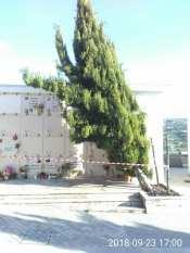 cimitero 1