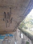 ponte 7
