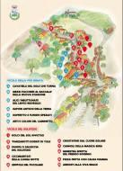 Viculi e Viculieddi mappa